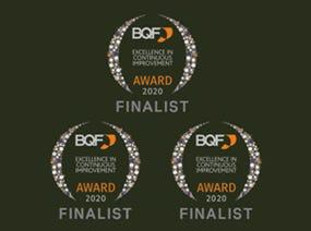 British Quality Foundation Awards