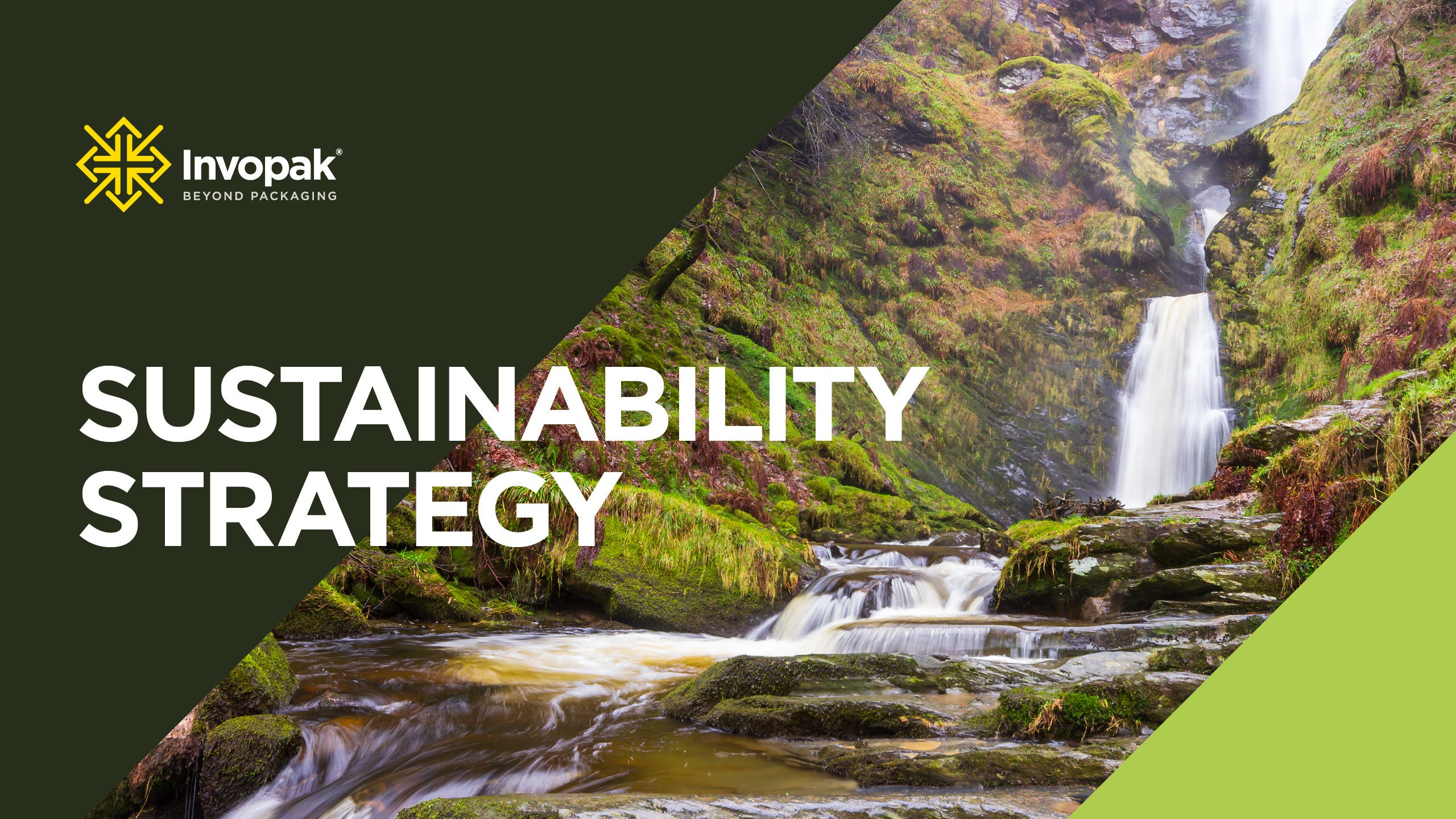 Building a sustainable business for the future